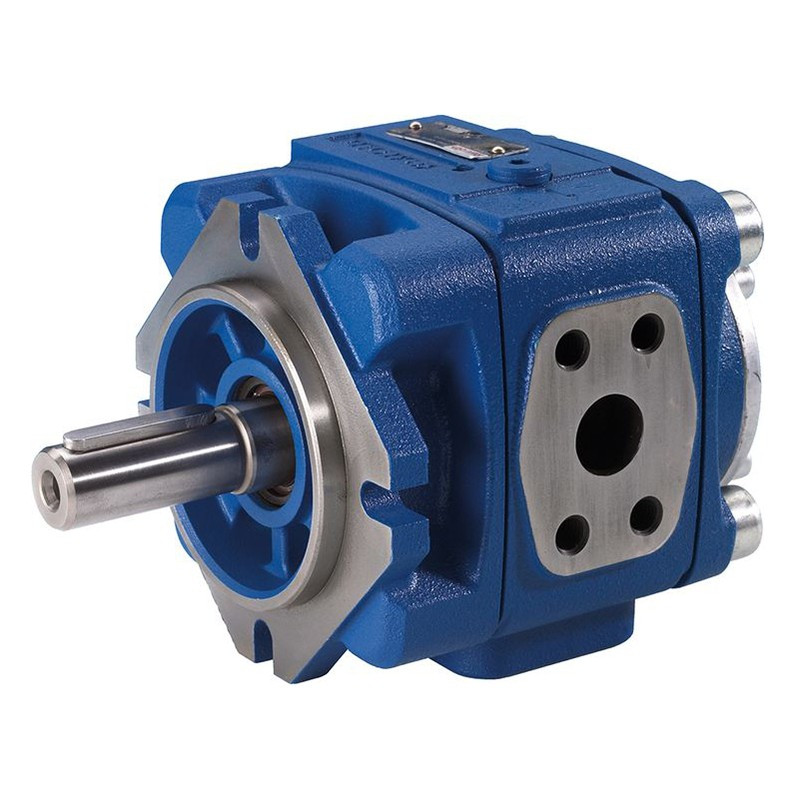 "The ""internal leakage"" and ""external leakage"" of the hydraulic gear pump cannot be ignored."