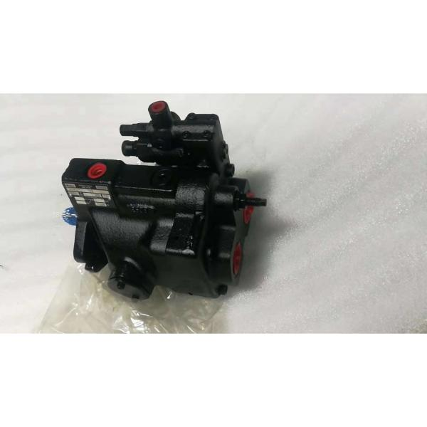 PV29-2R1D-J02 DENISON PV29 series Piston Pump